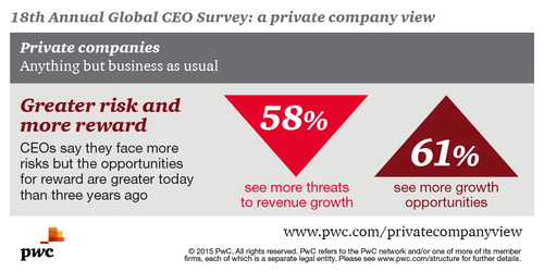 Private Company View, risks & rewards infographic