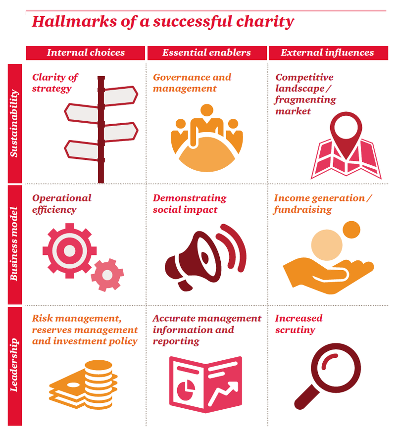 Hallmarks of a successful charity_matrix